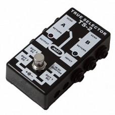 AMT Electronics TS-2 TRUE SELECTOR - пассивный двухканальный коммутатор (селектор)