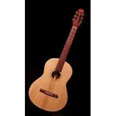 Форест F102 - гитара акустическая