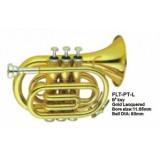 Conductor FLT-PT-L - труба компактная