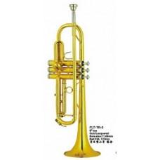 Conductor FLT-TR-3 - труба