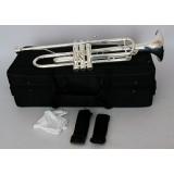 Conductor FLT-TR-3S - труба Bb