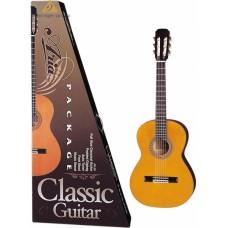 Aria CGPN-002 - гитара классическая (набор)