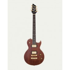 ARIA PE-TR-1 G - гитара электрическая