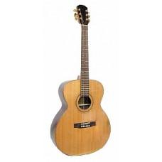 Strunal J978 - акустическая гитара