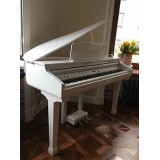 Orla 438PIA0633 Grand 120 - цифровой рояль