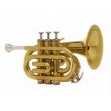 John Packer JP159G - труба Bb